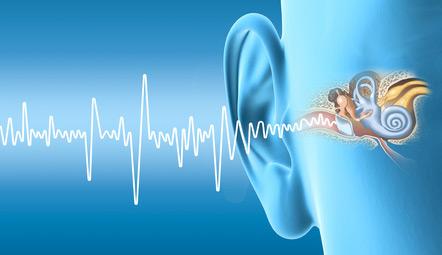 oreille et audition